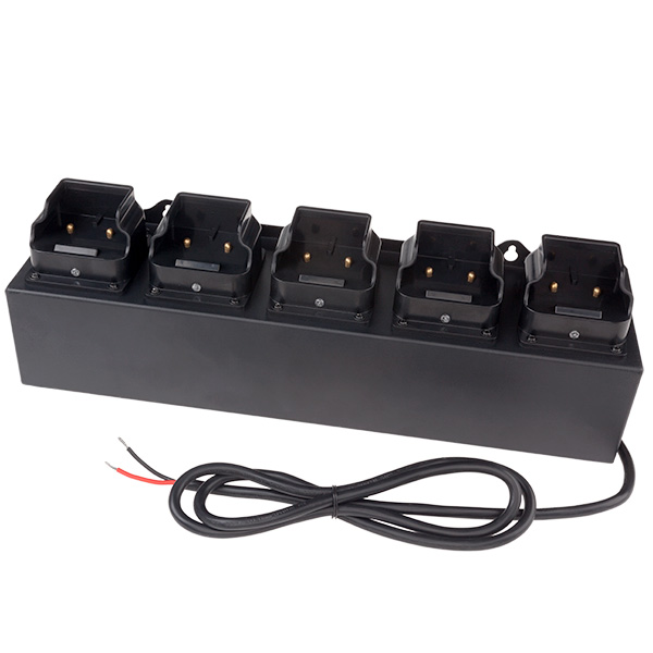 5-Bank DC 12-36V Charger - Rechargeable INTRANT™ Angle Lights